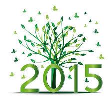 2015 flourish
